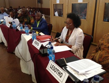 Ambassador Catherine Muigai Mwangi Participates at the Joint Permanent Representative Committee and African Union Commission Retreat in Hawassa