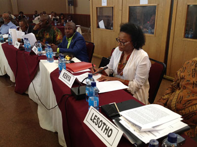 Ambassador Catherine Muigai Mwangi Participates at the Joint Permanent Representative Committee and African Union Commission Retreat